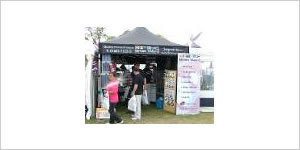 Horning Boat Show